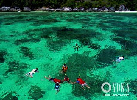 透过澄澈透明的海水,即使是浮潜也可以饱览水下的珊瑚和海洋动物。